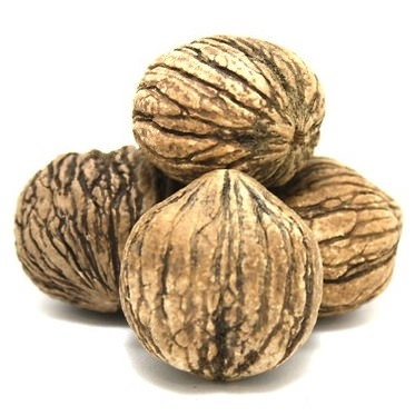 BLACK WALNUT EXTRACT (WATER SOLUBLE - PG)
