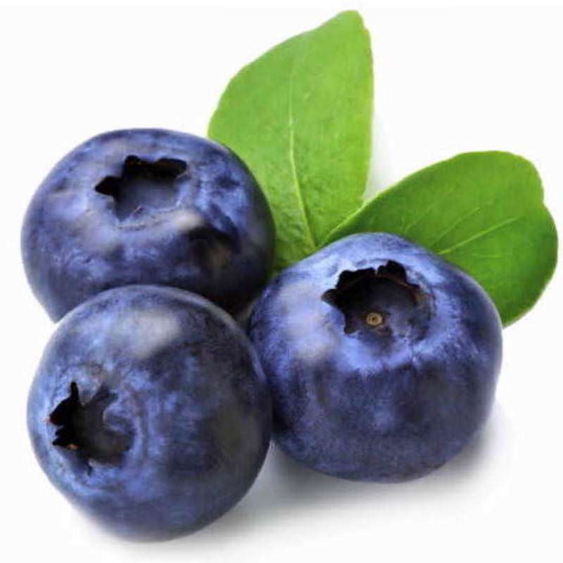 Blueberry Seed Oil | Organic Blueberry Oil - Nature In Bottle