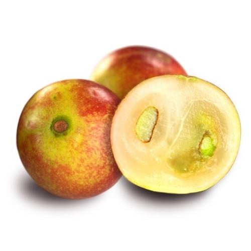 Camu Camu Extract | Myrciaria Dubia Fruit Extract - Nature In bottle