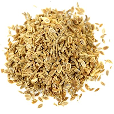 Carrot Seed Essential Oil | Organic Queen Anne's Lace Essential Oil - Nature In Bottle