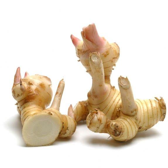 Galangal Essential Oil | Organic Galangal Root Essential Oil - Nature In Bottle