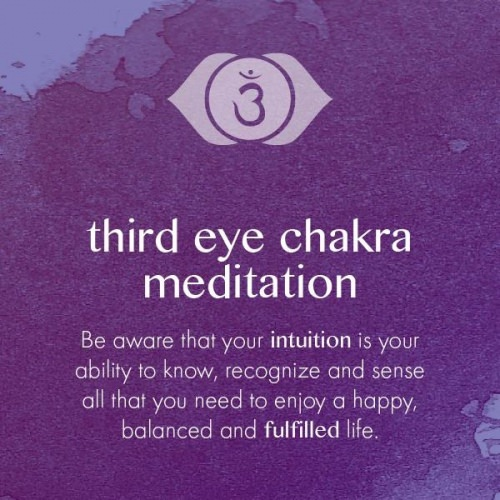 Third Eye Chakra Blend | Essential Oil Blend - Nature In Bottle