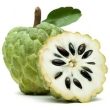 CUSTARD APPLE SEED OIL